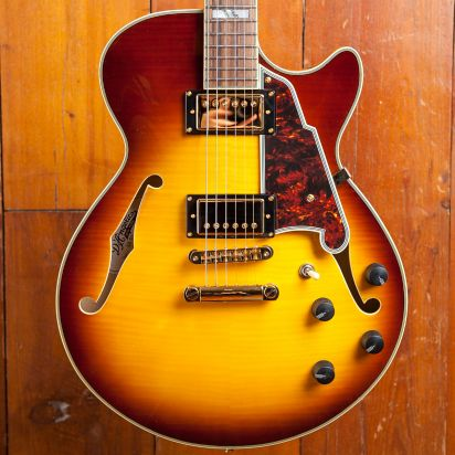 D'Angelico Excel SS, Iced Tea Burst